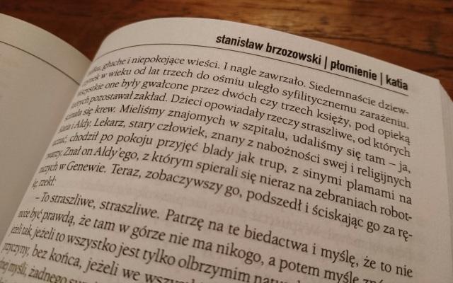 Stanislaw Brzozowski Plomienie