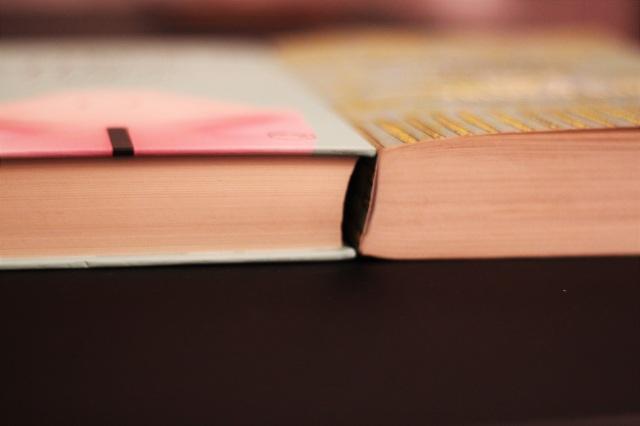 książki (11)